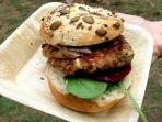 Veggie Patch Van Food Truck – All over Sydney